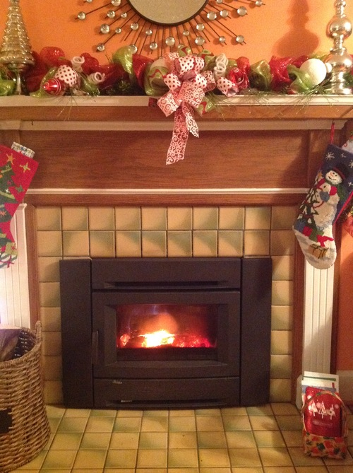 Regency Wood Burning Fireplace Inserts Stove Store Stark